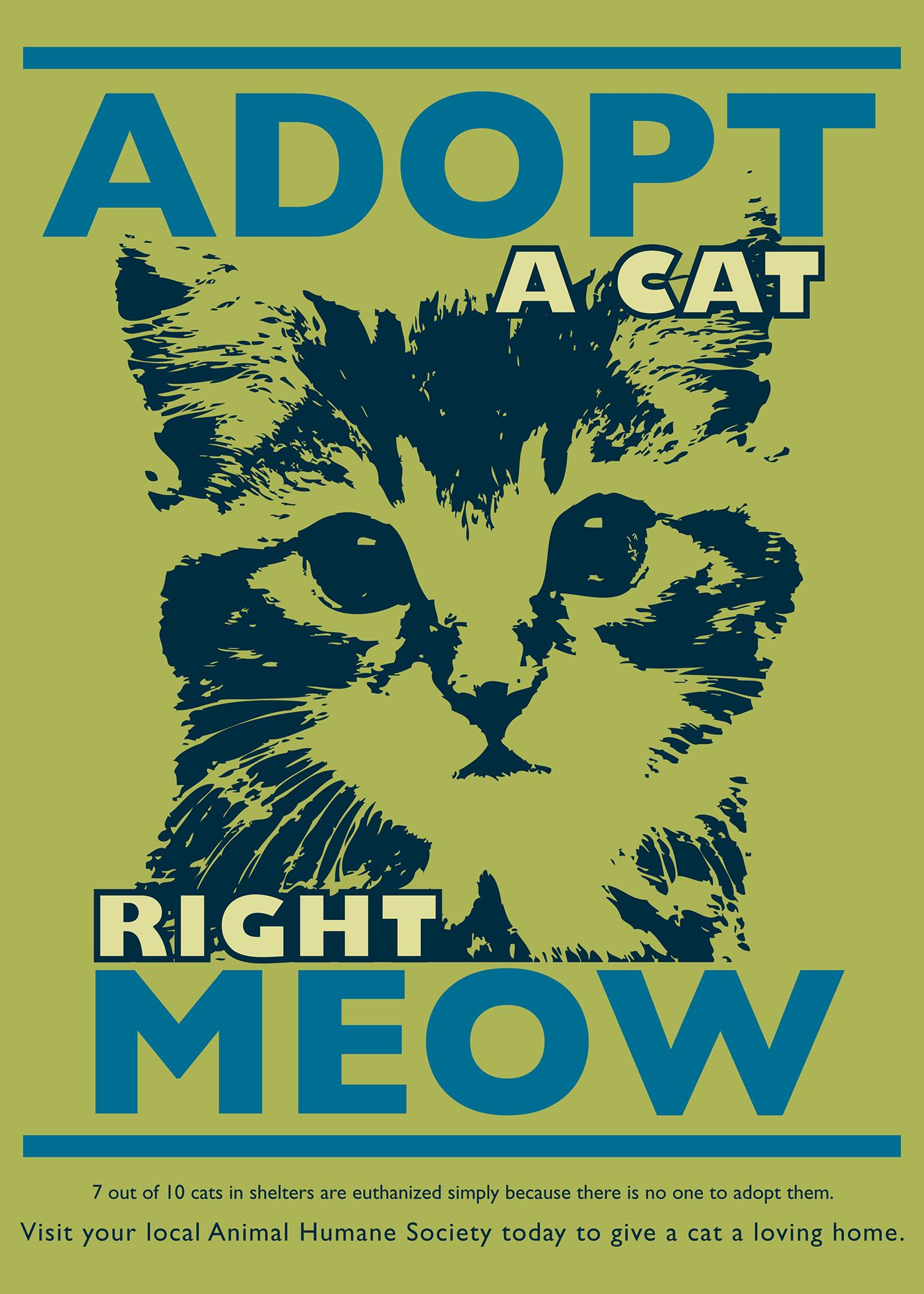 Public Service Announcement Highlighting Cat Adoption Cats Animal Shelter Humane Society