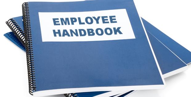 Why You Need An Employee Handbook | Artpreneur   Employee Handbook