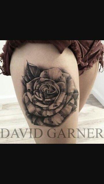 Beautiful musical rose