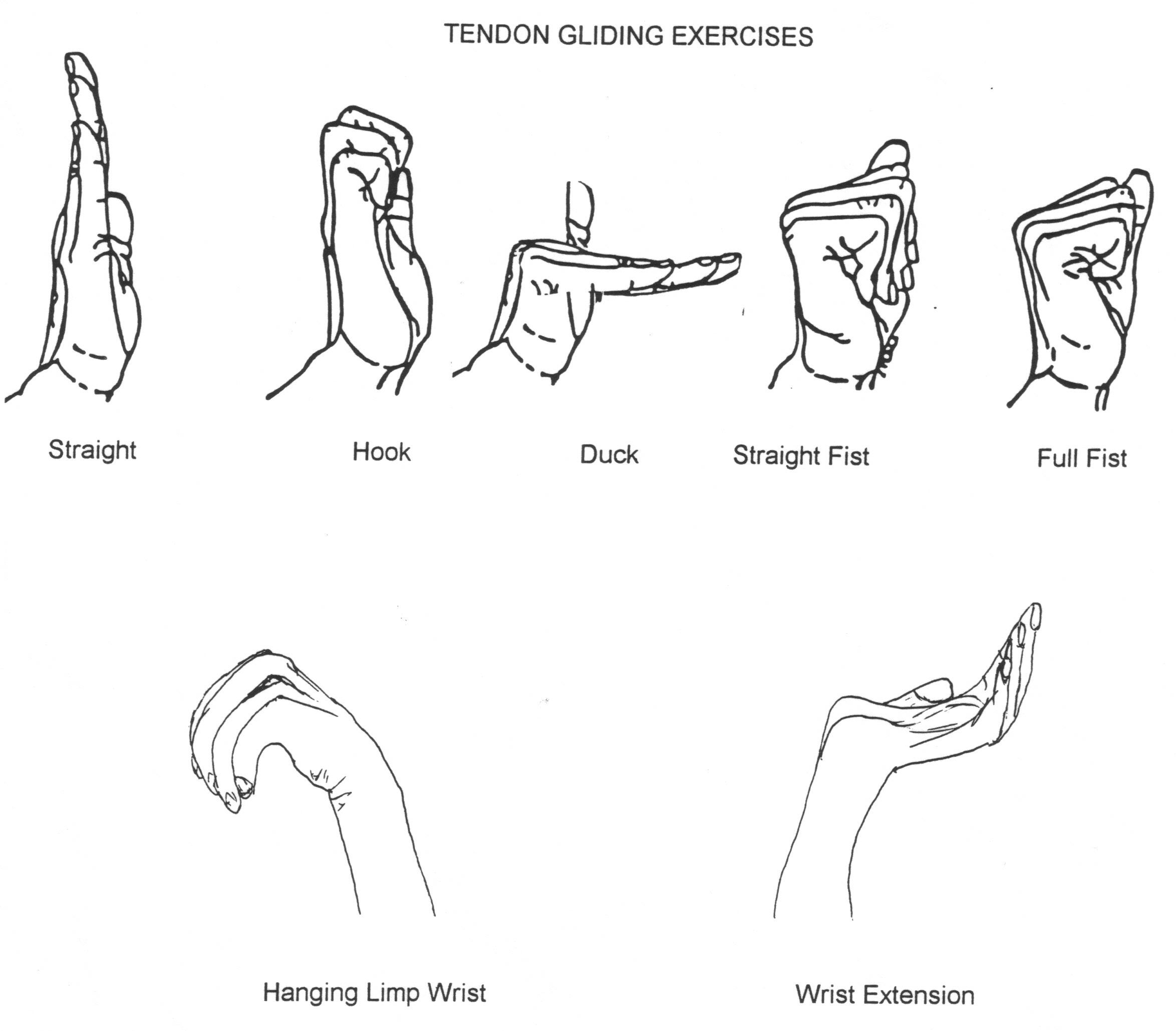 Ulnar Nerve Exercises Post Op Carpal Tunnel Therapy Carpal