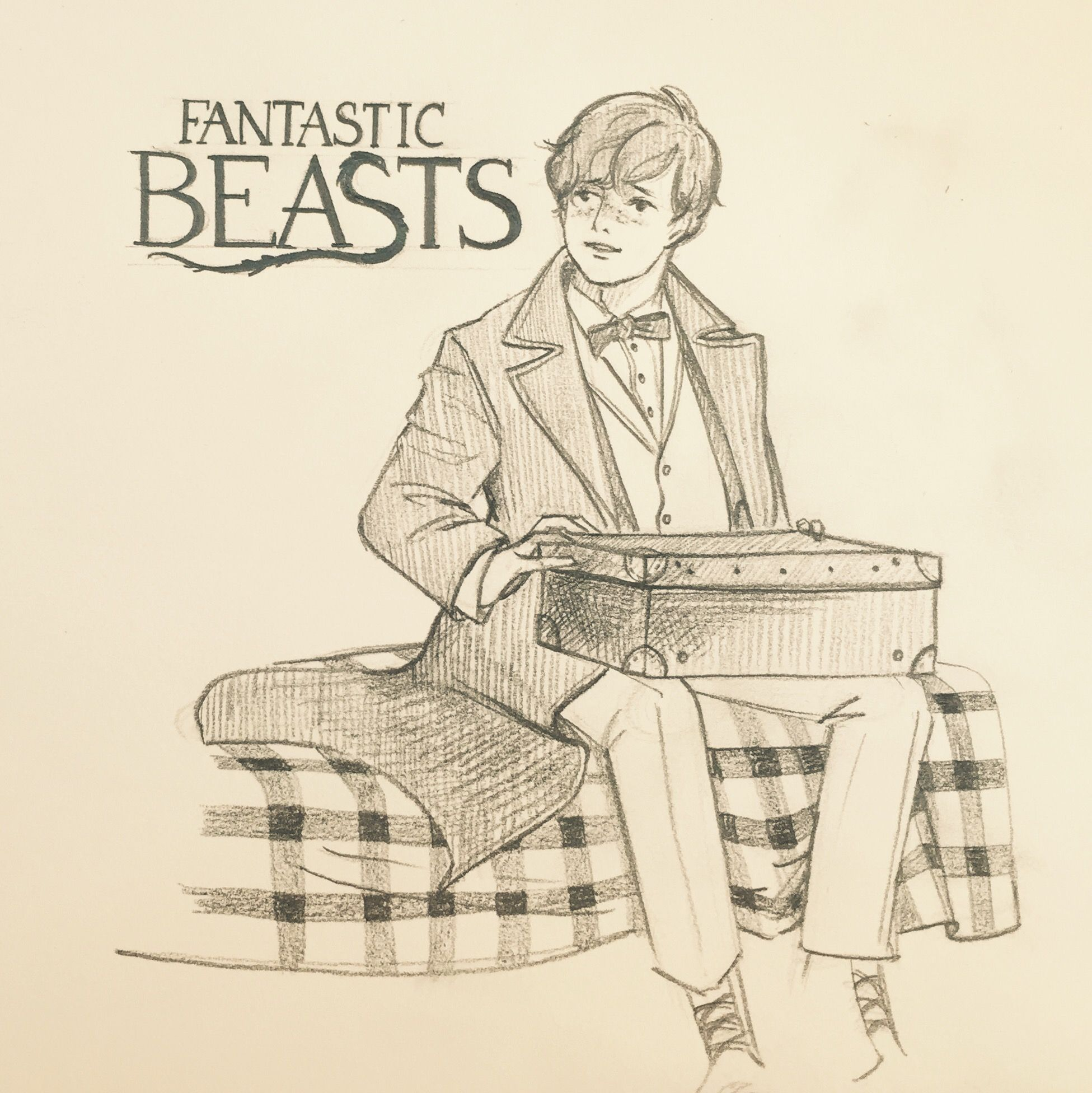 Fantastic Beasts And Where To Find Them Pencil Drawing