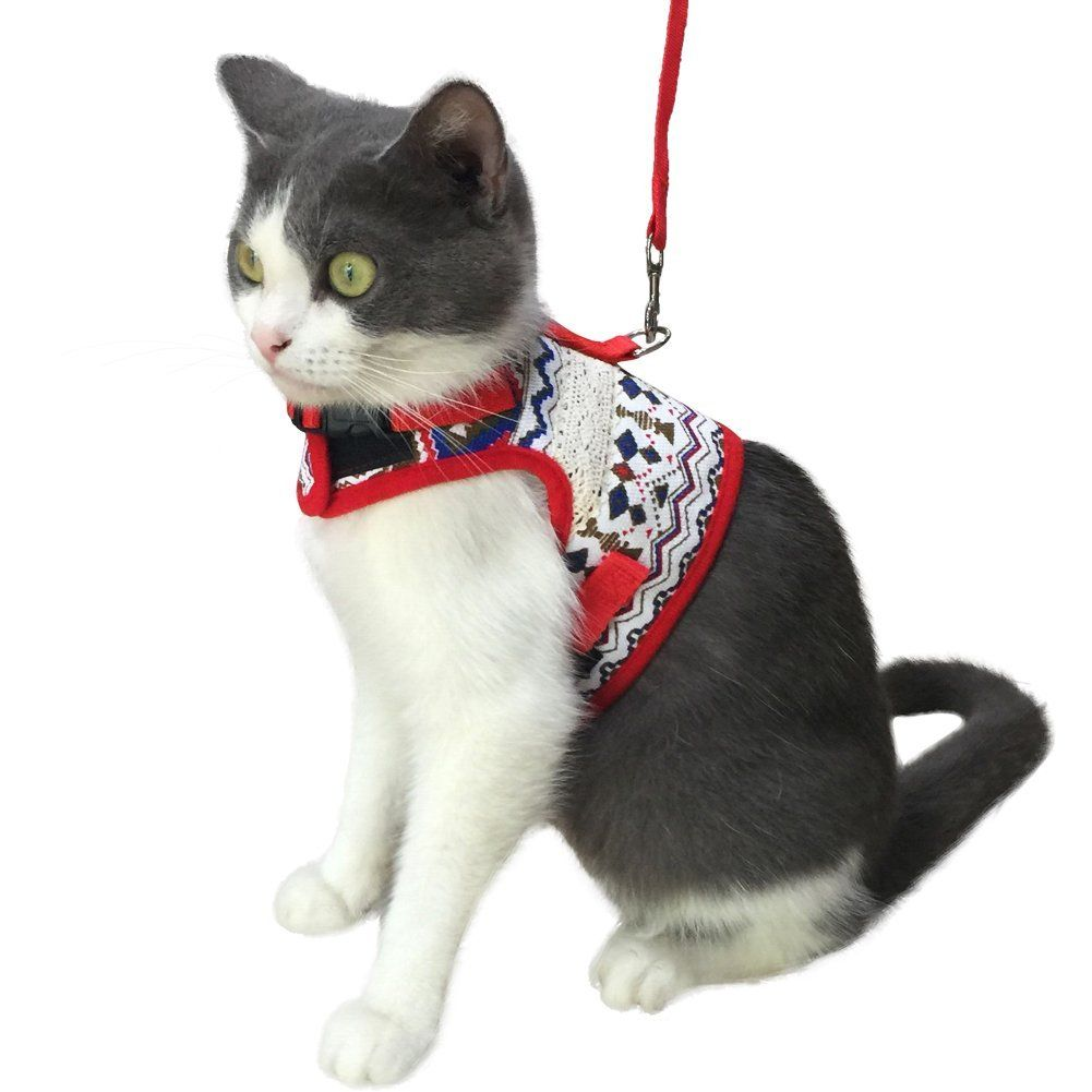 Kzhareen Escape Proof Cat Harness With Leash Set Adjustable Soft Mesh For Kitty Puppy Small Dogs Animals Click Image To R Cat Harness Small Puppies Pet Pigs