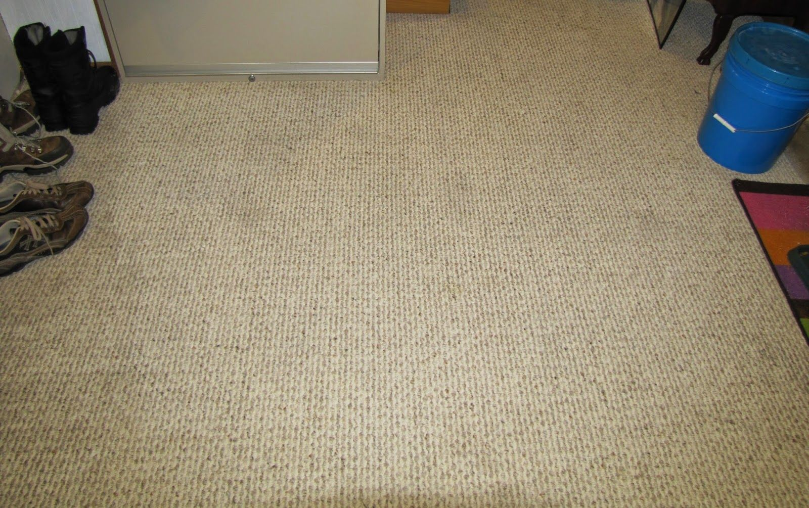 How To Clean Pet Stained Carpet How To Remove Pet Stains From Carpet Carpet Cleaning Pet S Carpet Cleaning Hacks Carpet Cleaning Pet Stains How To Clean Carpet