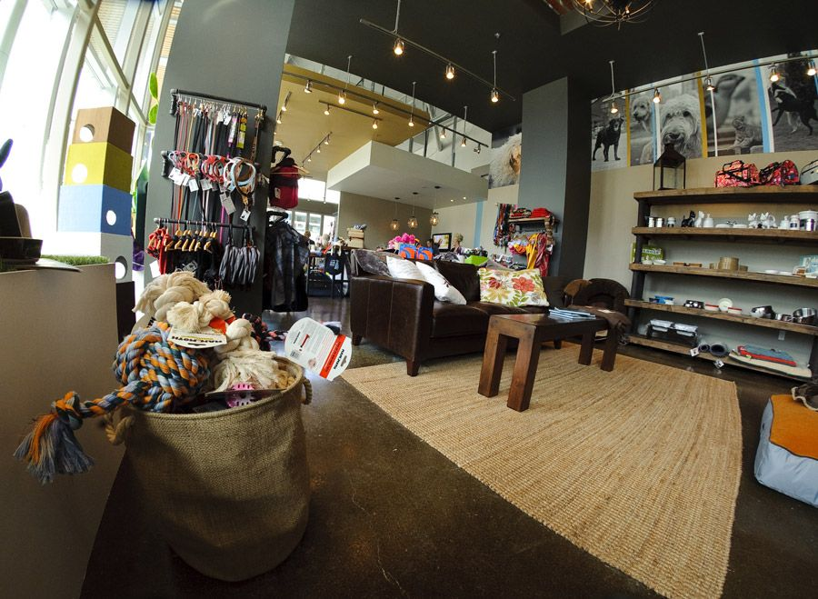 Pet Boutique Boutique Interior Design Store Design Interior Interior Design Images