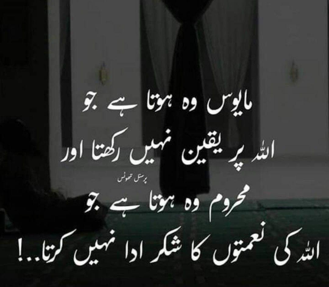 Nice lines | Me quotes, Urdu quotes, Quotes