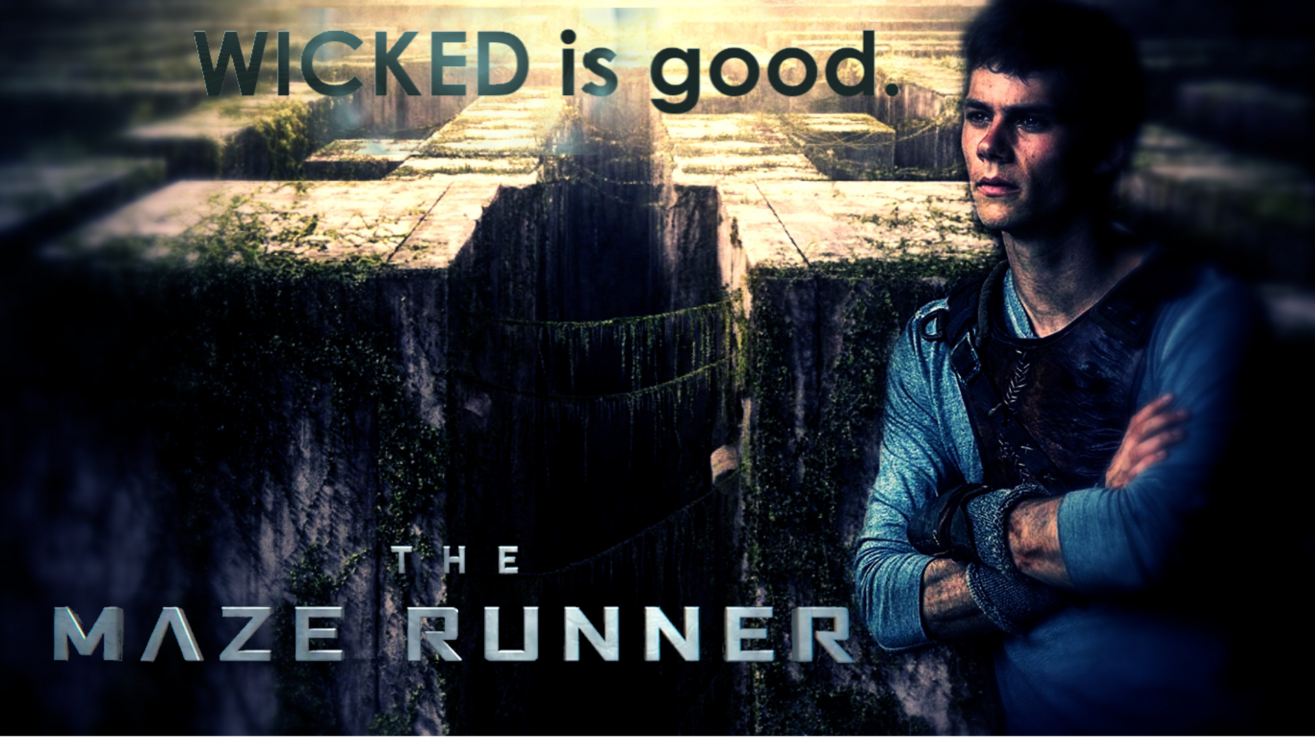 The Maze Runner Wallpaper The Maze Runner The Maze