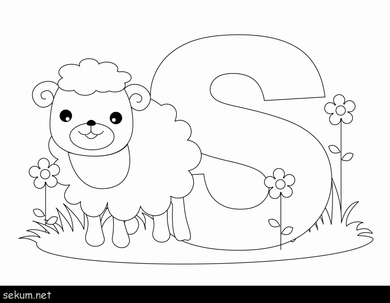 Picture To Coloring Page Converter Luxury Coloring Pages Free
