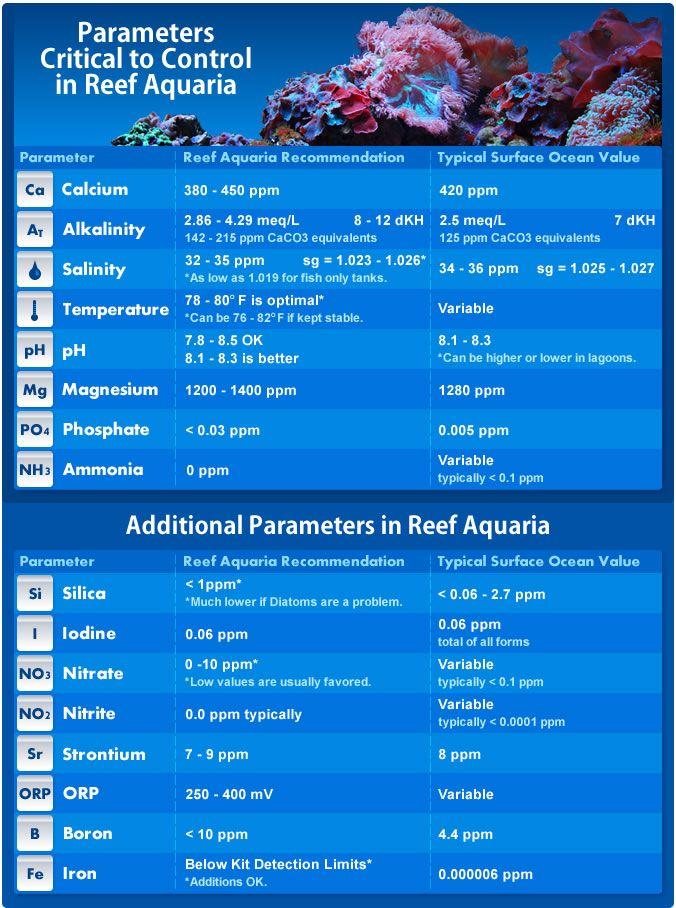 Reef Tank Parameters Reef Aquarium Saltwater Aquarium Setup Marine Fish Tanks