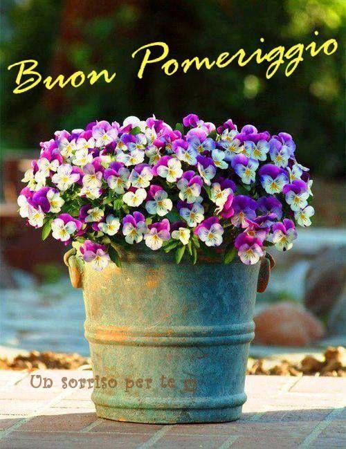 Préférence Buon Pomeriggio #buonpomeriggio | Buongiorno | Pinterest  AJ24