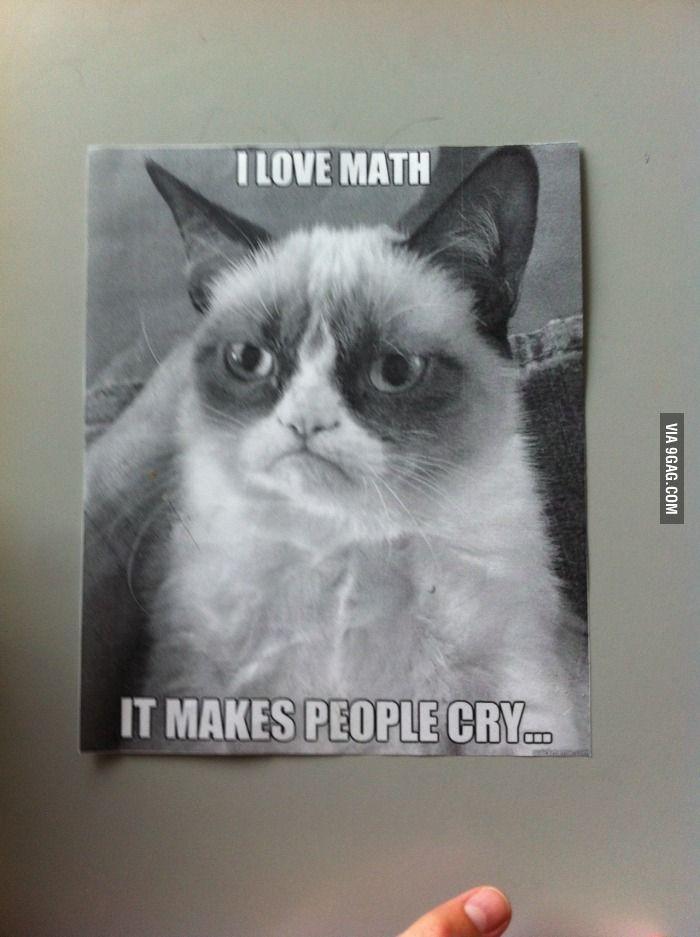 So I Found This In My School Grumpy Cat Meme Grumpy Cat Humor Funny Cat Memes
