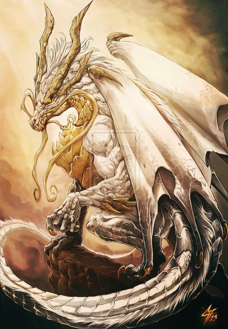 First Realm. Stone Dragon cover book Dragon Fantasy Myth Mythical Mystical Legend Dragons Wings Sword Sorcery  Magic