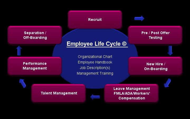 Employee life cycle human resources pinterest