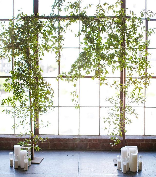 Country Wedding Altar Ideas: Image Result For Smilax Pergola Decor
