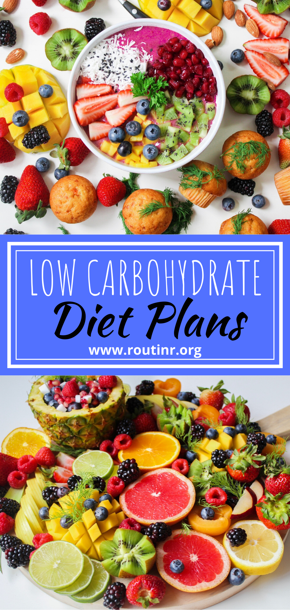 LOW CARBOHYDRATE DIET PLANS in 2020 Low carbohydrate