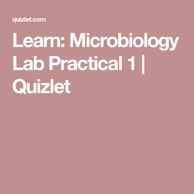 Learn: Microbiology Lab Practical 1 | Quizlet | Micro study lab