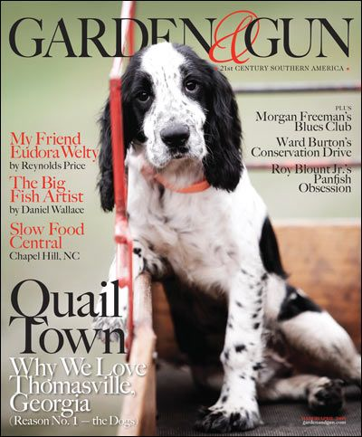Fantastic Father S Day Ideas Beautiful Dogs I Love Dogs English Cocker