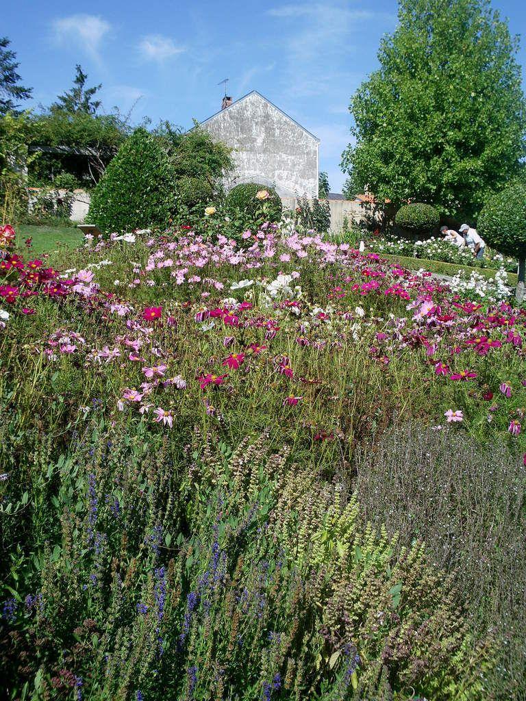 Le Jardin Des Olfacties A Coex Beaux Jardins Parc Et Jardin Et