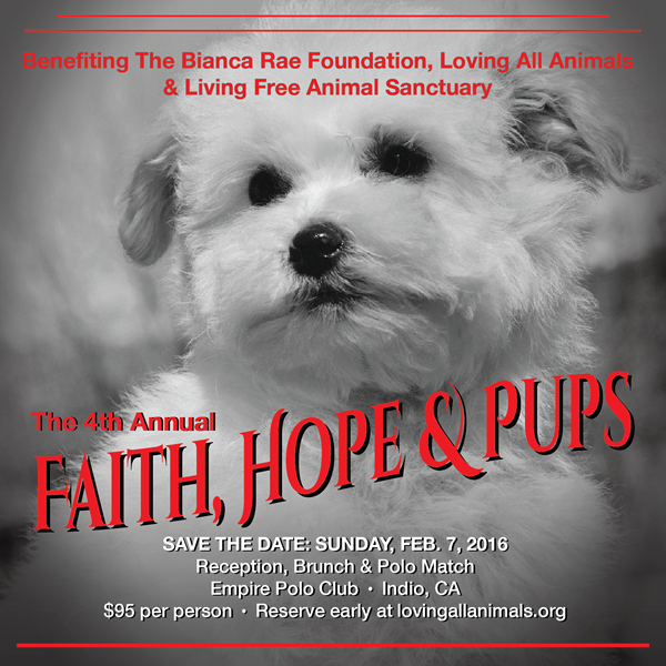A fundraiser for a good cause :) #rescue #adoptdontshop