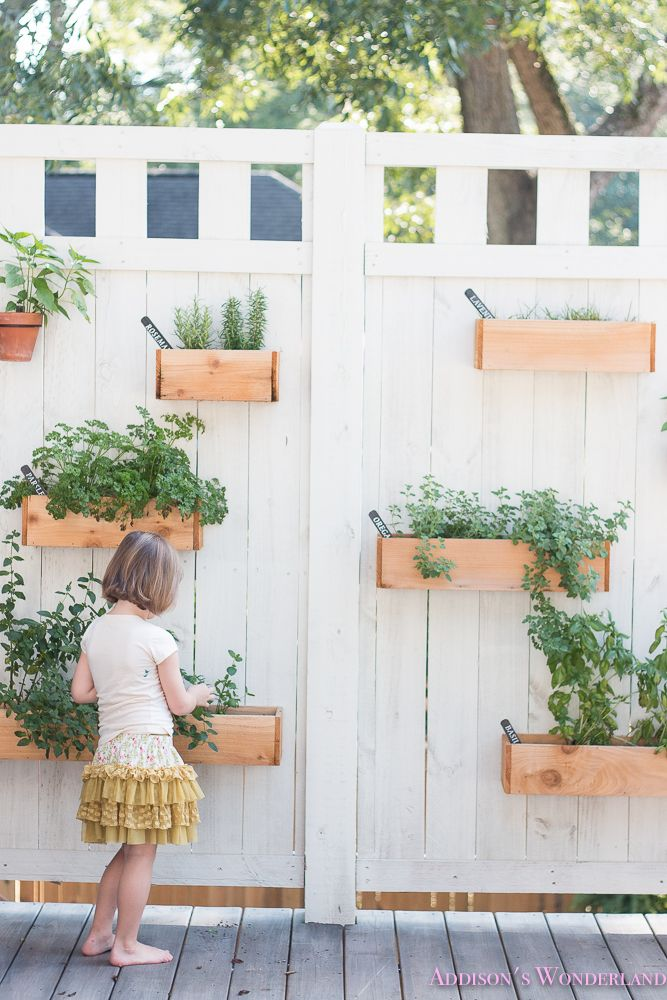 Our Under $40 DIY Outdoor Herb Wall is part of Wall planters outdoor, Patio wall planters, Herb wall, Outdoor herb garden, Garden wall, Herb garden wall - Happy Thursday friends! Today I am totally changing things up and doing something I never ever do! I am sharing a super affordable and super duper awesome DIY project! Okay that probably sounds weird  Weird as in not how I mean it  Mark and I really do LOVE some good DIY projects  We literally DIY'ed …