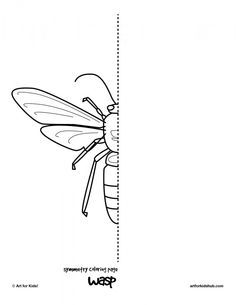 10 free insect symmetry pages to draw.