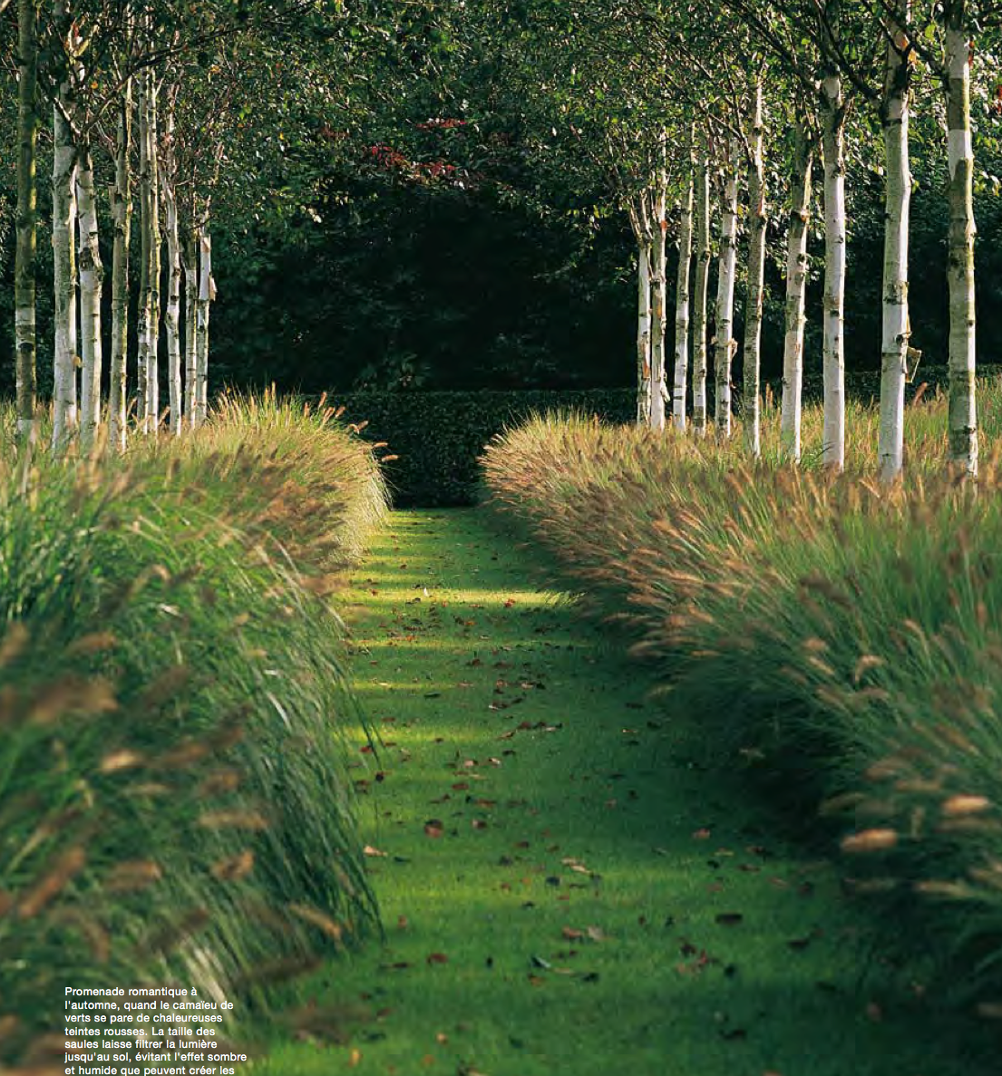Garden by piet blanckaert landscape architect gardens for Short grasses for landscaping