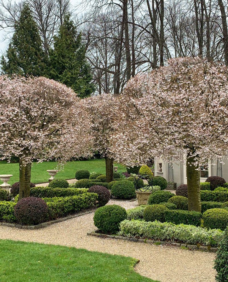 The Centerpiece of Parterre Garden