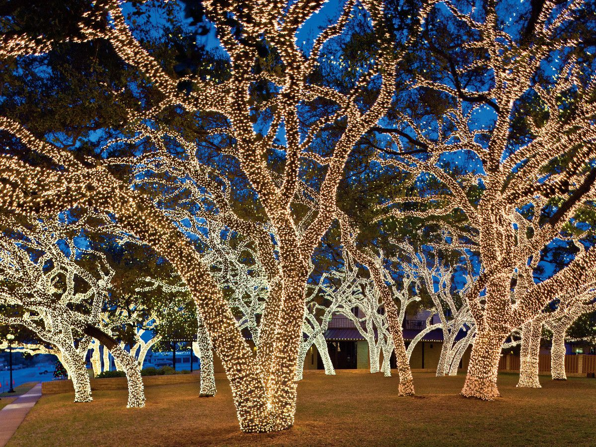 The Twinkliest Drive in Texas Christmas lights, Outdoor