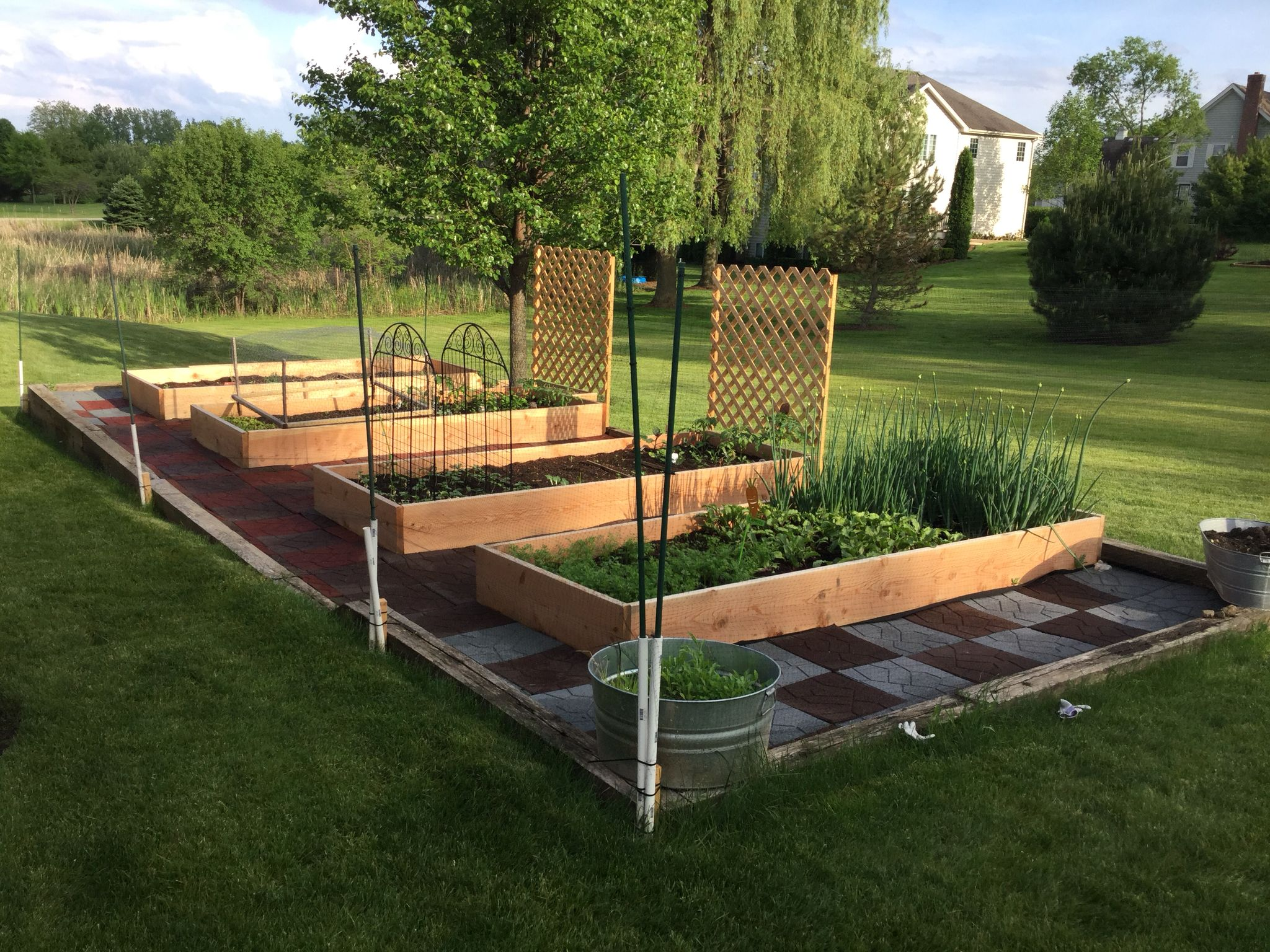 Rosalia S 2015 Raised Bed Garden With Deer Fence A