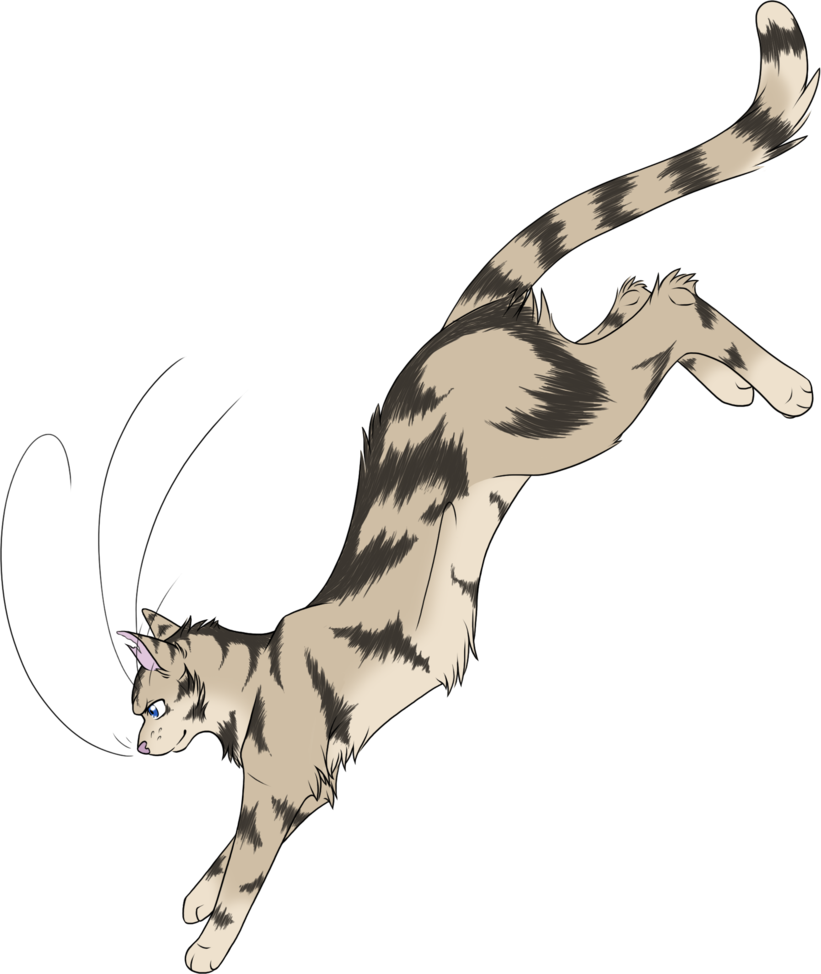 Warrior cats 029 longtail by kuroi hitsuji