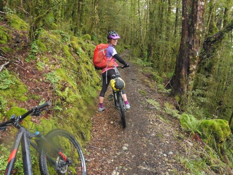 With So Many Great Cycle Trails All Over New Zealand Chances Are