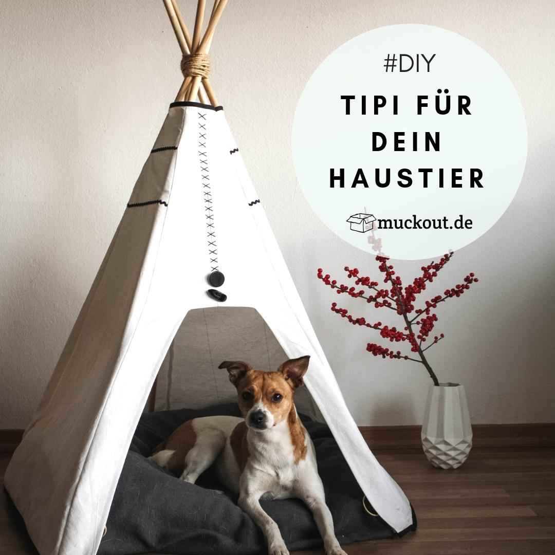DIY Idee: Haustier Tipi selber machen – einfache Anleitung