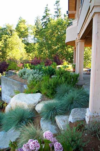 More Front Scape Ideas · Landscaping IdeasBackyard ...