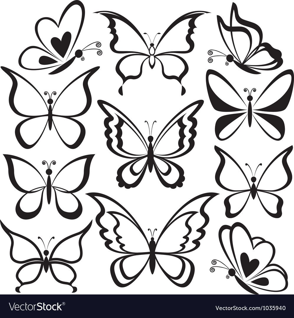 Butterflies Black Contours Vector Image On Vectorstock Butterfly Drawing Easy Butterfly Drawing Butterfly Outline