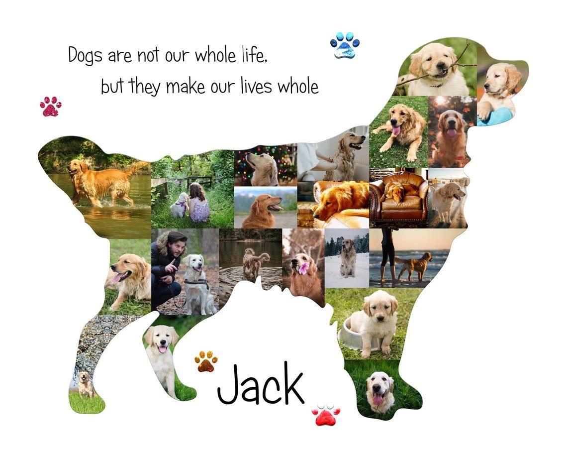 Golden retriever art dog photo collage gift golden