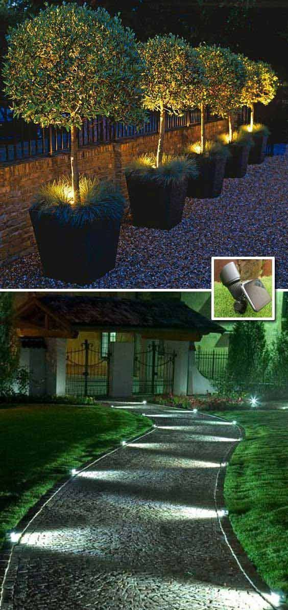 Luminous Garden Lighting Ideas Backyard Landscaping Backyard Outdoor
