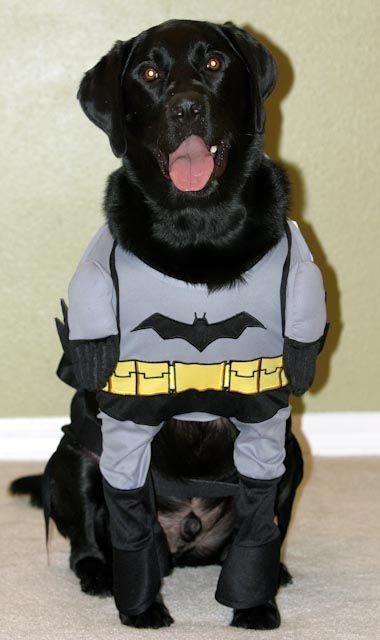 Batman Rules.