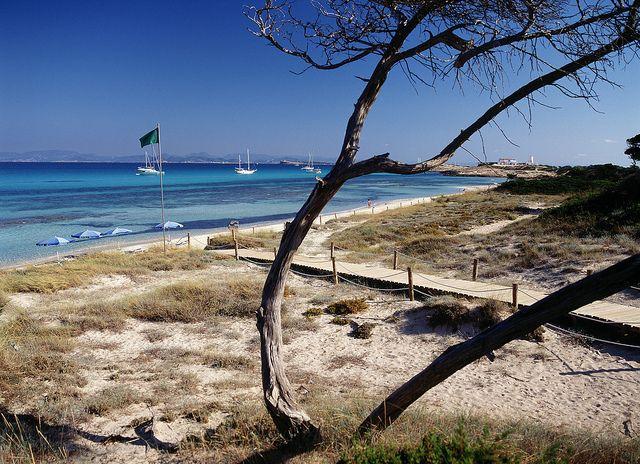 """Playa """"es Cavall d'en Borràs"""" , Formentera - BALEARIC ISLANDS (SPAIN)"""