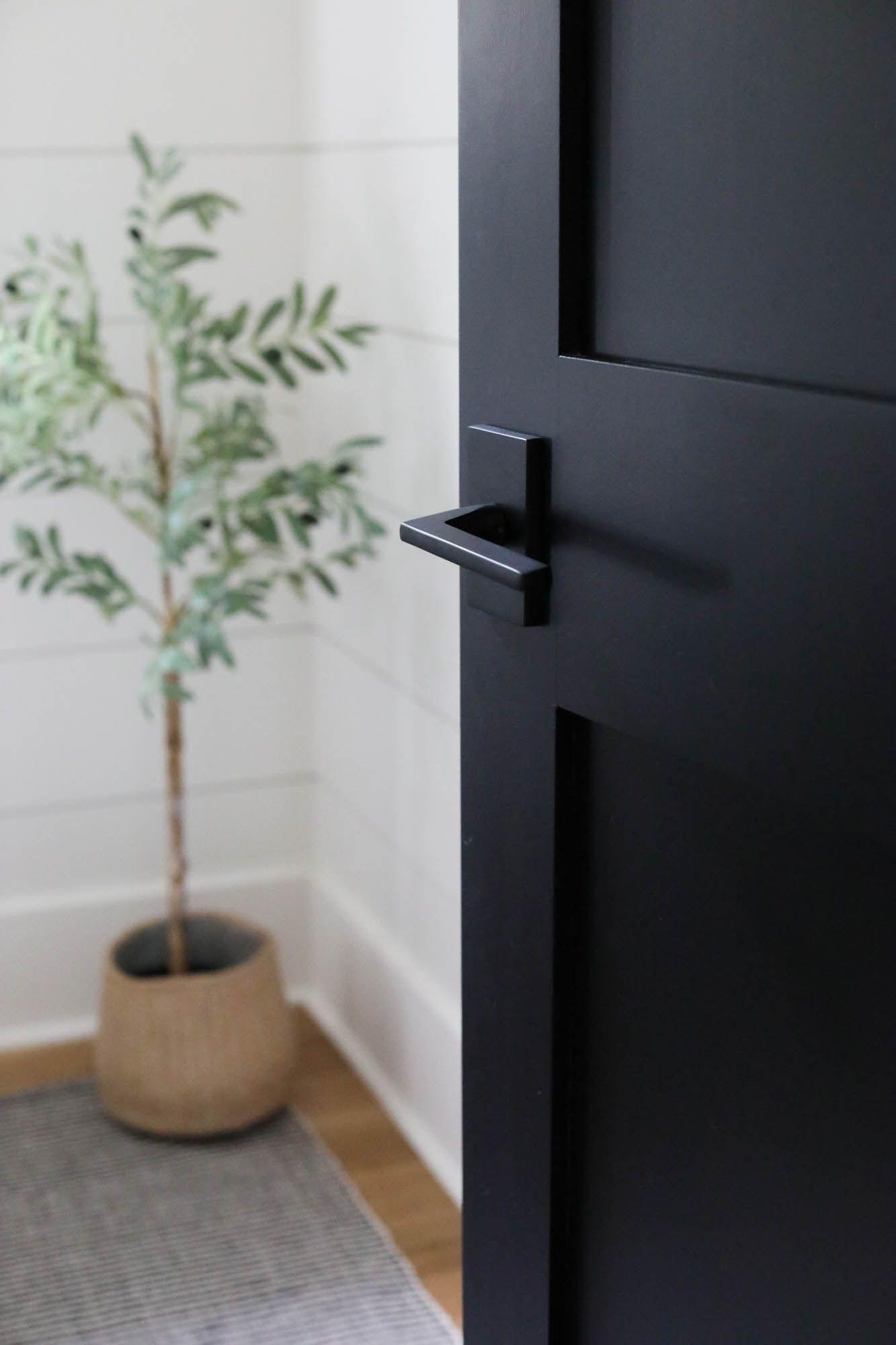 Photo of Black Interior Doors