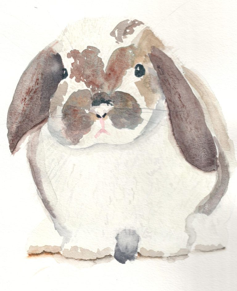 Groß Gerahmte Roger Rabbit Ideen - Benutzerdefinierte Bilderrahmen ...