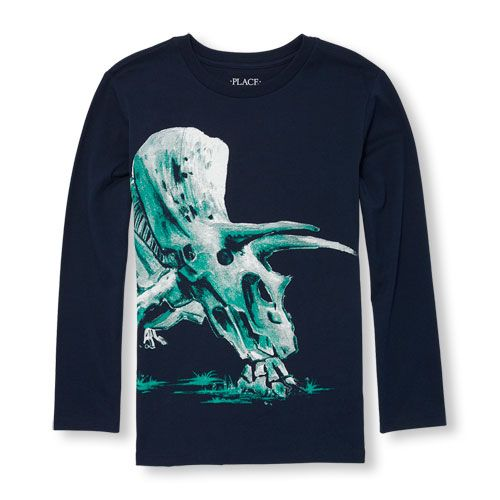 8718216ef s Boys Long Sleeve Dino Skeleton Graphic Tee - Blue T-Shirt - The ...