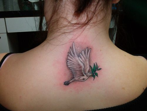Dove Tattoos For Girls All About Dove Tattoos Dove Tattoo Dove Tattoo Design
