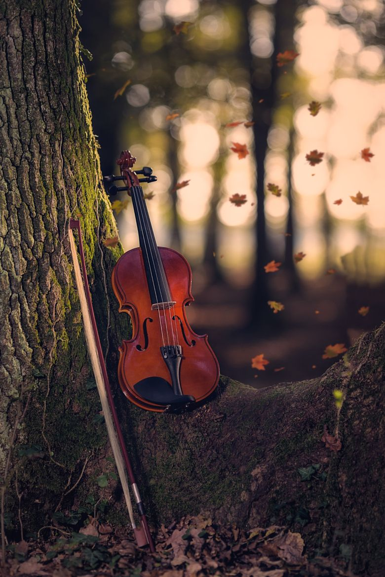 Autumn Song Cool Pictures For Wallpaper Violin Photography Studio Background Images