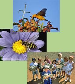 8ab42f4b474df3b9bb9a0dfe281639e5 - University Of California Master Gardener Program