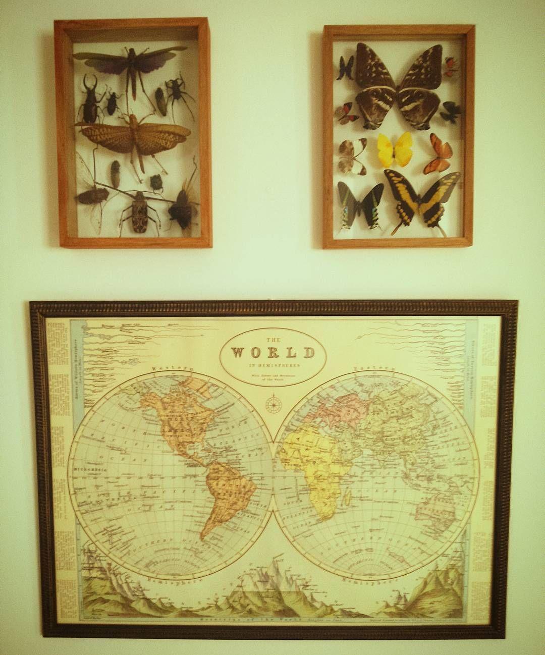 Rincones de inspiración  #home #design #tattoostudio #loveink #travel #Carocortes #insect by tattoocarocortes