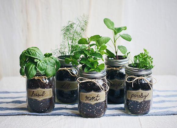 Diy Mason Jar Fresh Herb Garden With Images Mason Jar Herb