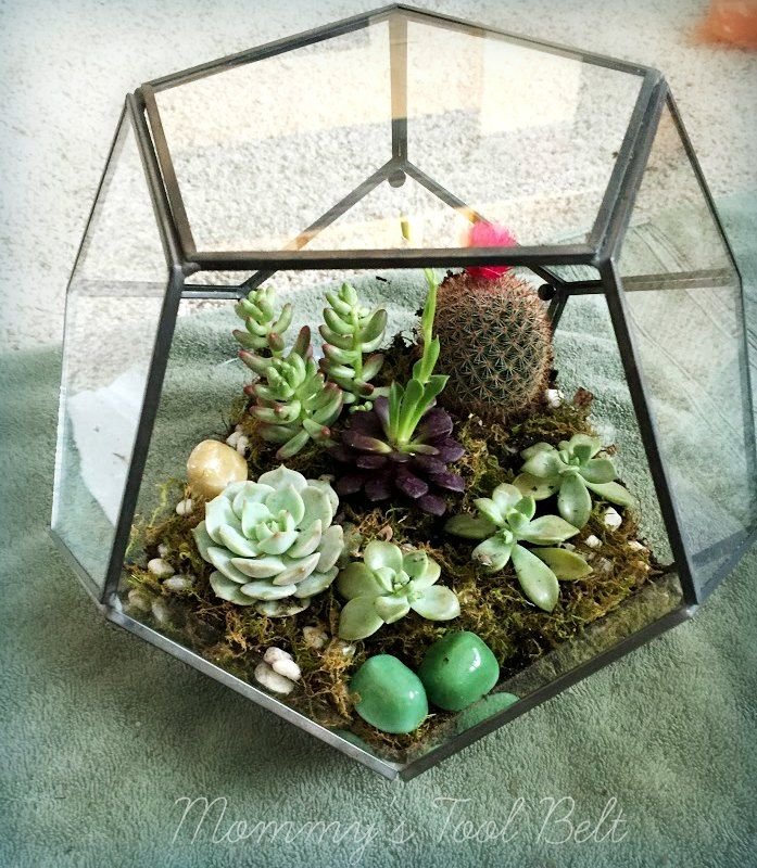 diy hanging globe and geo terrariums crafts we love pinterest hanging terrarium. Black Bedroom Furniture Sets. Home Design Ideas