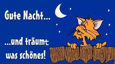 Wünsch euch eine gute Nacht - http://guten-abend-bilder.de/wuensch-euch-eine-gute-nacht-180/