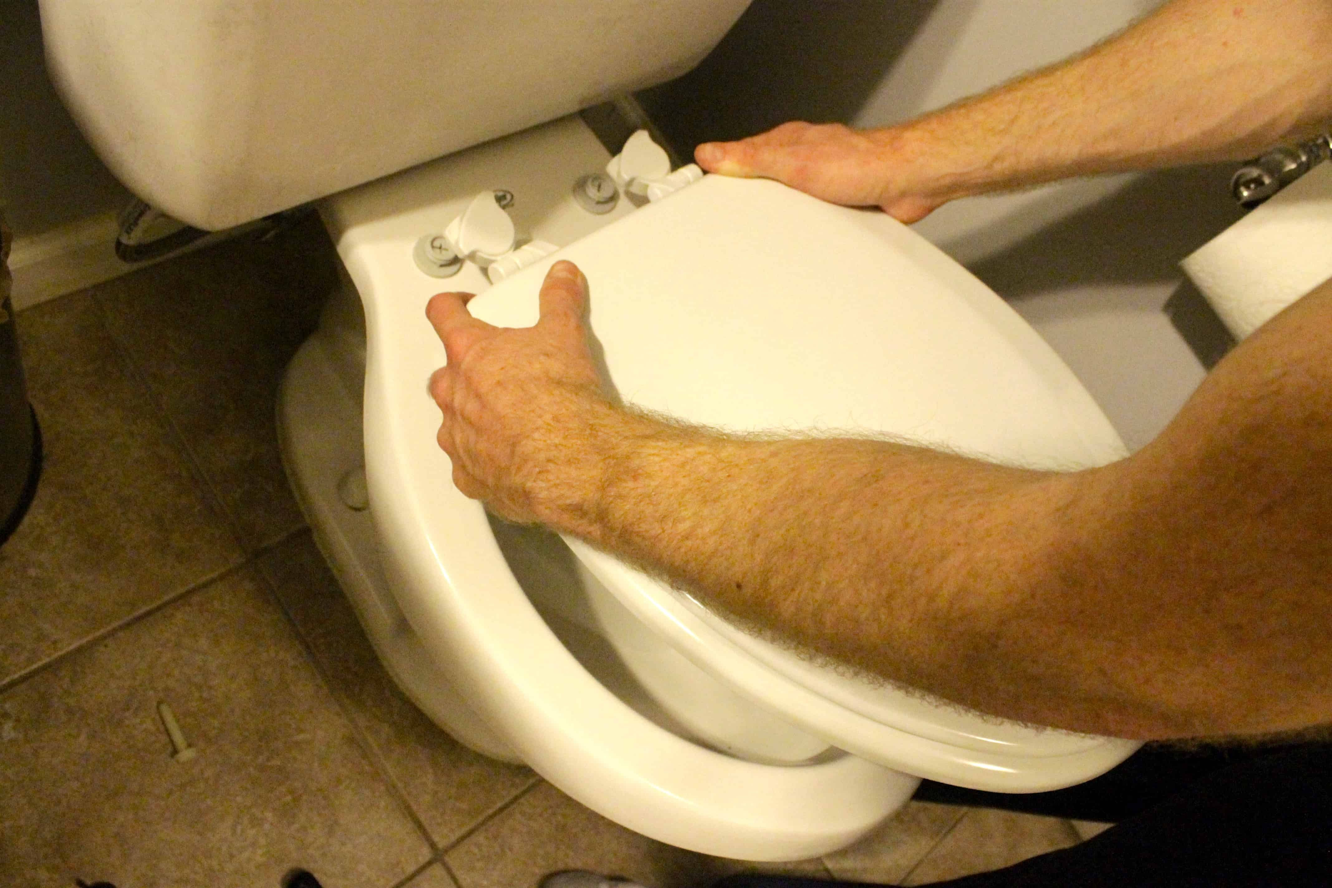 How To Change A Toilet Seat In 2020 New Toilet Toilet Seat Toilet