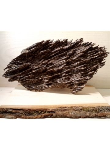 The Premium Agarwood Collection online: High quality Oud for