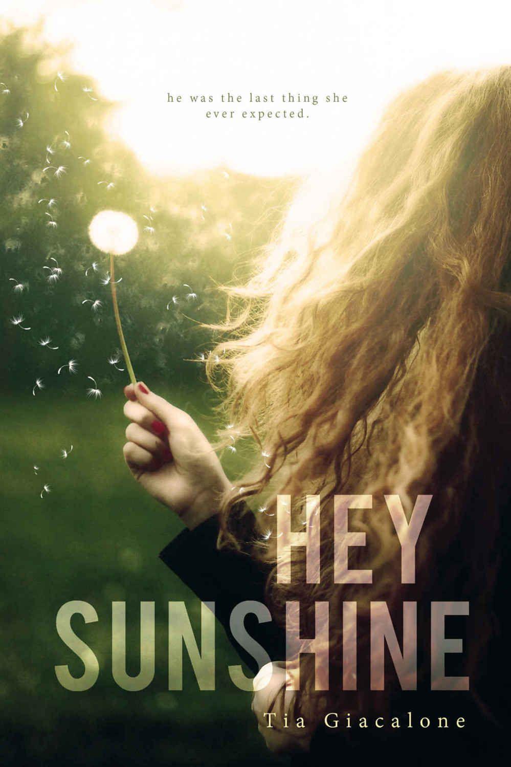 Hey sunshine pdf epub free books